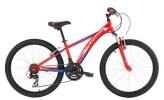"""Kinder / Jugend BH Bikes BH OREGON 24"""" SUPS."""