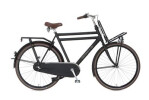 Citybike Cortina Transport U4 Regular