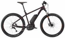 E-Bike Bergamont BGM Bike E-Roxter 6.0 Plus