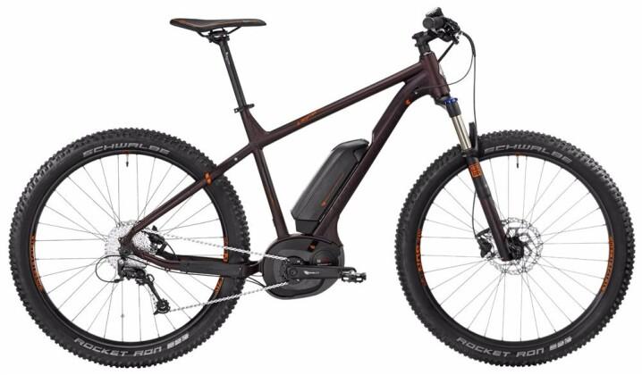 E-Bike Bergamont BGM Bike E-Roxter 6.0 Plus 2017