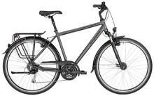 Trekkingbike Bergamont BGM Bike Horizon 5.0 Gent