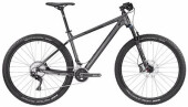 Mountainbike Bergamont BGM Bike Roxter 8.0
