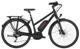 E-Bike Victoria e Trekking 8.8