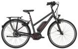 E-Bike Victoria e Trekking 7.8