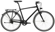 Citybike GIANT FastCity CS 2