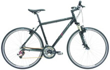 Urban-Bike Maxcycles CX One XK 24