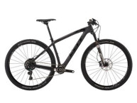 Crossbike Felt Nine 1