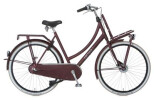 Citybike Cortina U4 Transport