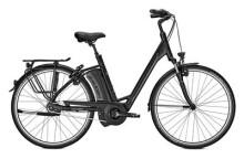 E-Bike Raleigh BOSTON 8