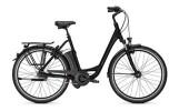 E-Bike Raleigh DOVER IMPULSE XXL