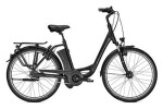 E-Bike Raleigh DOVER IMPULSE 8 HS