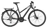 Trekkingbike Raleigh RUSHHOUR 3.0 DISC