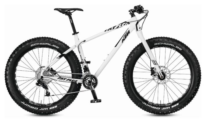 Mountainbike KTM Bikes Fat Flea  20s GX 2017