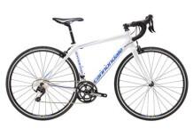 Rennrad Cannondale 700 F Synapse Al 105 CAS 44