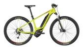 E-Bike Bergamont E-Revox 5.0
