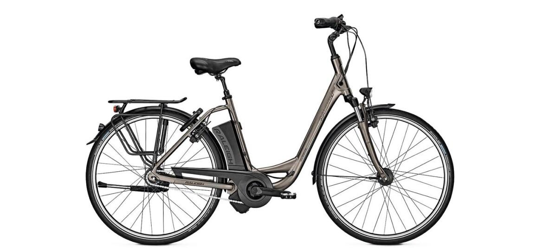 raleigh dover impulse 8 hs 14 5ah e bike power aus deutschland. Black Bedroom Furniture Sets. Home Design Ideas
