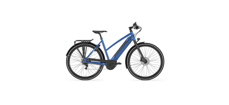 gazelle cityzen c8 e bike mit bosch antrieb g nstig kaufen. Black Bedroom Furniture Sets. Home Design Ideas