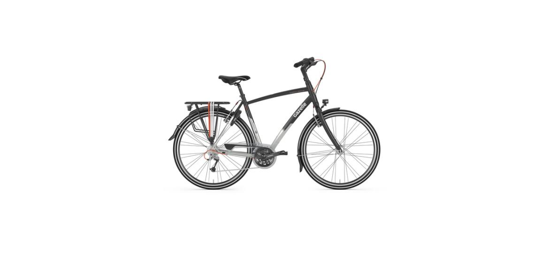 Gazelle Trekkingbike Chamonix mit großem Rahmen kaufen.