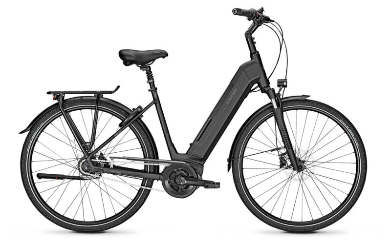Raleigh Bristol 8 Grey Matt Wave 2019