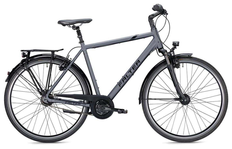 Falter C 6.0, Citybike mit 8-Gang Nabenschaltung, Rücktrittbremse. Herren