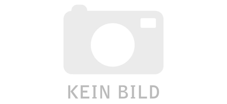 Riese und Müller Delite mountain rohloff