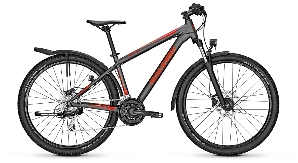 Raleigh Daymax 29