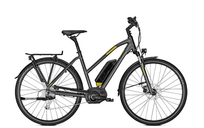 Raleigh STOKER B9 E-Bike