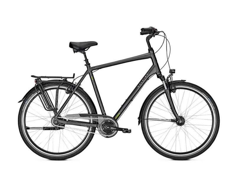 Raleigh UNICO XXL Diamant