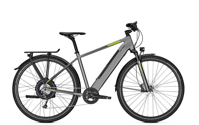 Raleigh STANTON 9 E-Bike