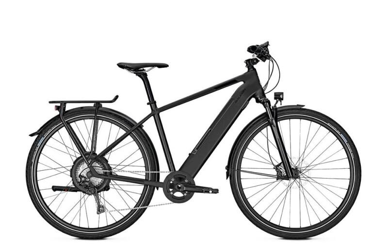 Raleigh STANTON 11 E-Bike