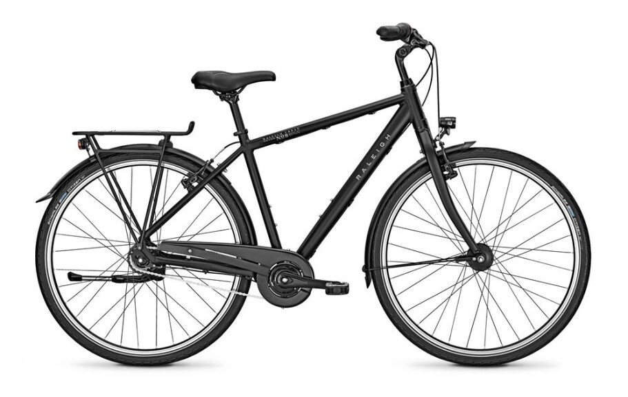 Raleigh Modell 2021 - Devon 8 - Herren - 55/L