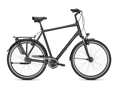 Raleigh CHESTER 8 XXL Diamant