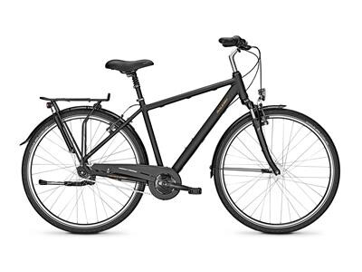 Raleigh CHESTER 7 Diamant
