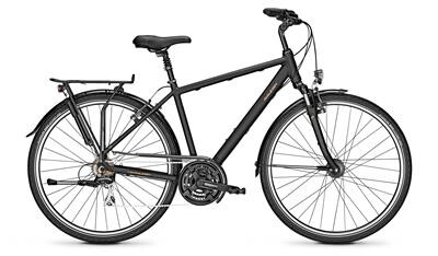 Raleigh CHESTER 21 Diamant