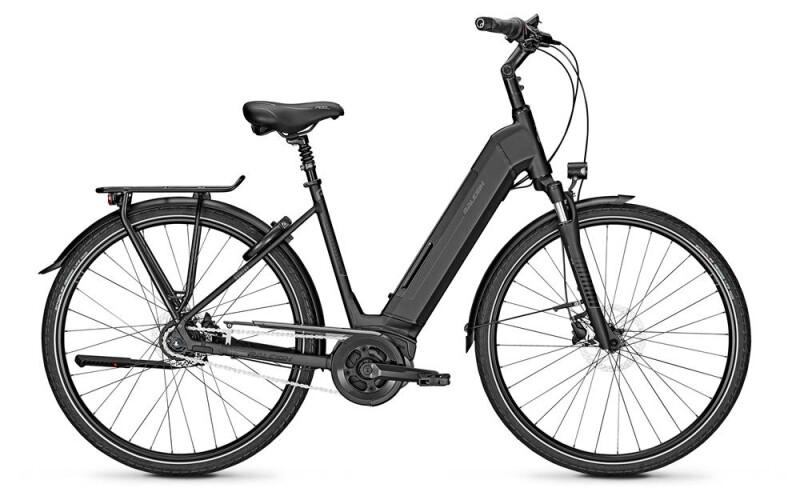 Raleigh BRISTOL 8 E-Bike