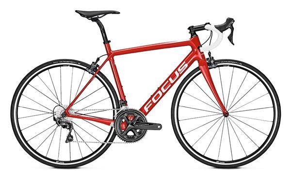 FOCUS - IZALCO RACE 9.8 Rot
