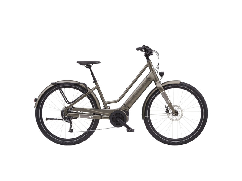 Electra Bicycle Vale Go! 9D EQ