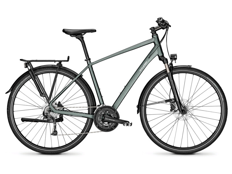 Raleigh RUSHHOUR 3.0 techgreen Diamant
