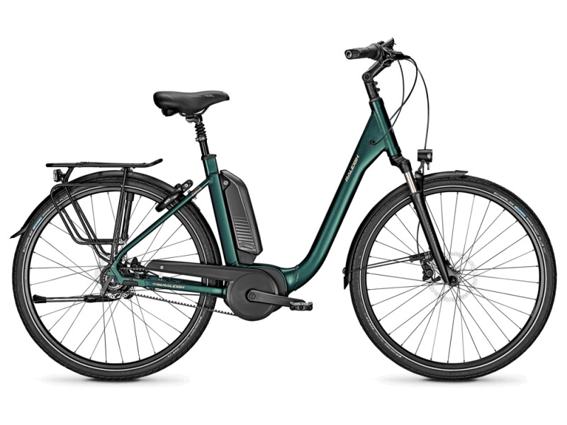 Raleigh KINGSTON PREMIUM kombugreen Comfort