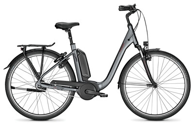 Raleigh KINGSTON 8 shadowgrey Comfort