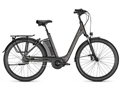 Raleigh Corby 8R XXL