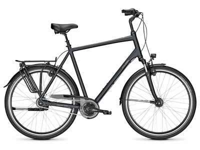 Raleigh Chester 8R XXL