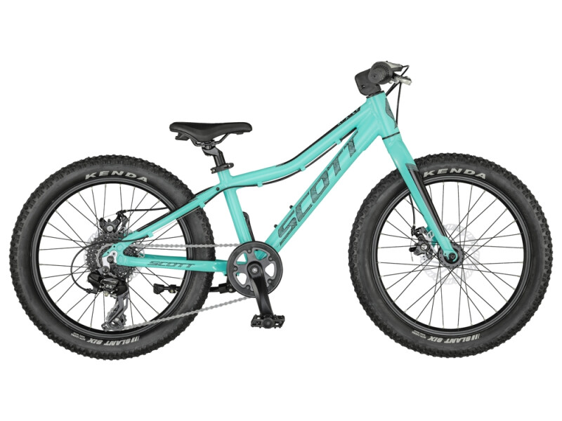 Scott Roxter 20 Bike Teal Blue