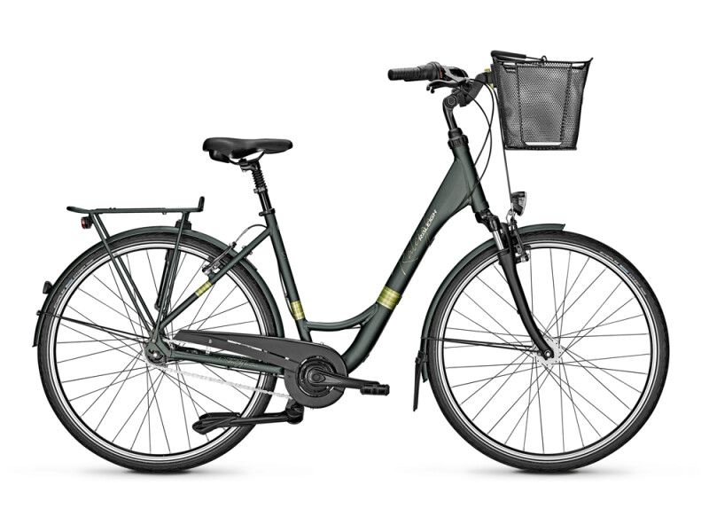 Raleigh UNICO LIFE Wave green