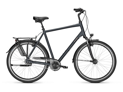 Raleigh CHESTER 8 XXL Diamond
