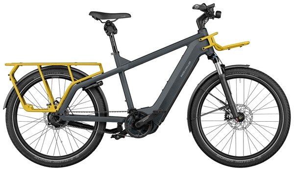 RIESE UND MÜLLER - Multicharger GT rohloff DualBattery 1125
