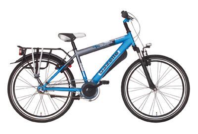 Gazelle Bike Machine 24