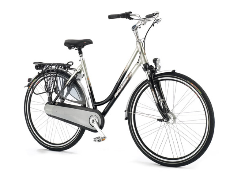 Raleigh Deventer Premium