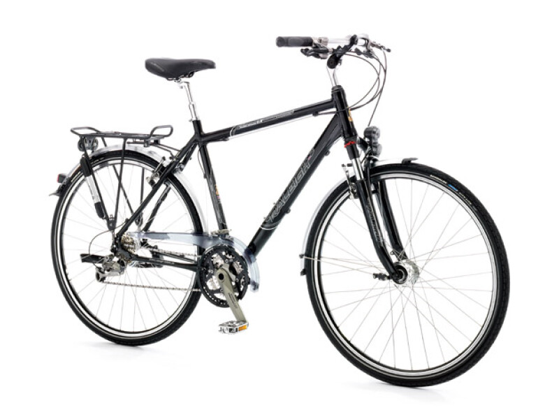 Raleigh Richmond LX Herren