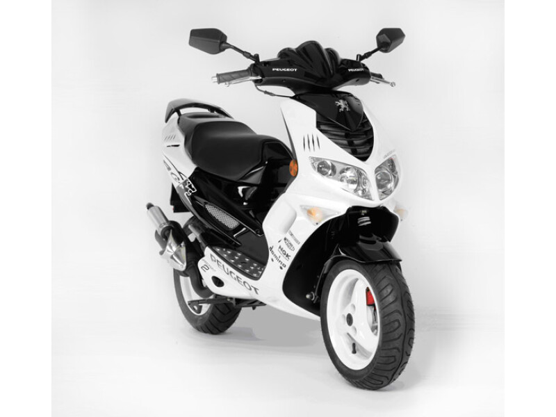 Peugeot Motocycles Speeedfight R-Cup